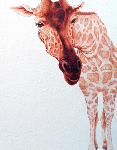 numata - giraffe